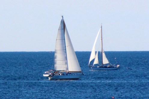 Sail14