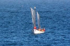 Sail11