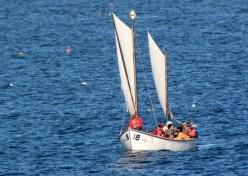 Sail20