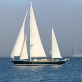 Sails7