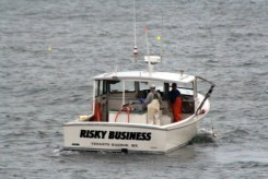 RiskyBusiness11