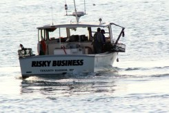 IMG_9080RiskyBusiness