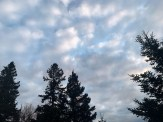 IMG_0387Clouds