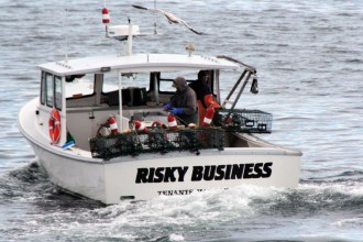 IMG_3469RiskyBusiness
