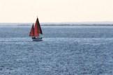 IMG_3979Sailboat