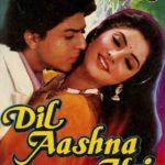 Shahrukh Khan Dil Aashna Hai Poster