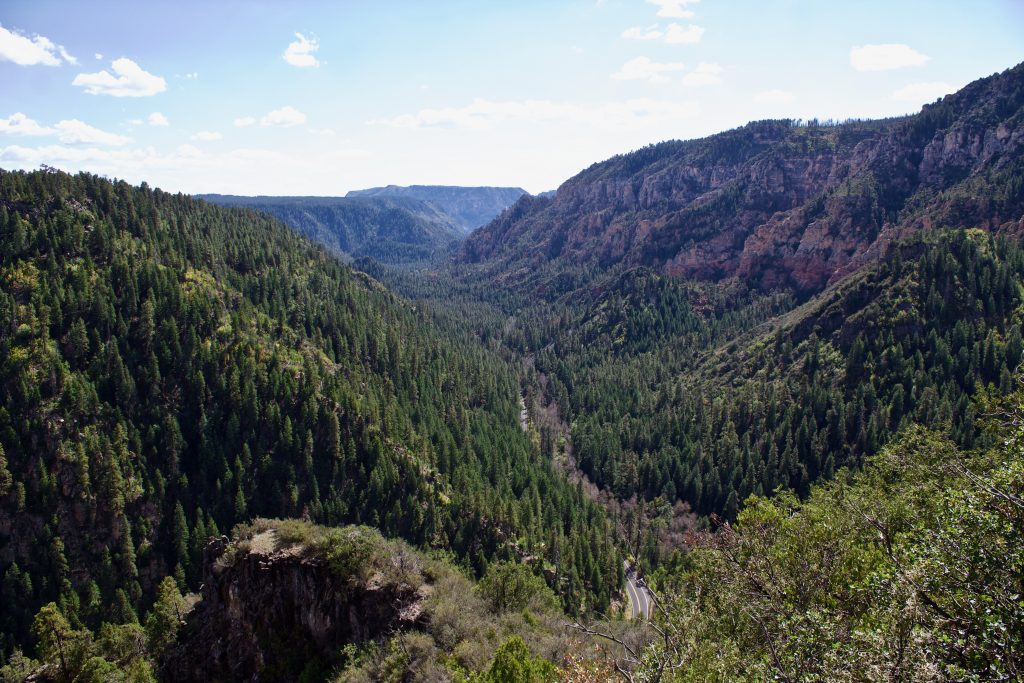 Coconino national forest arizona