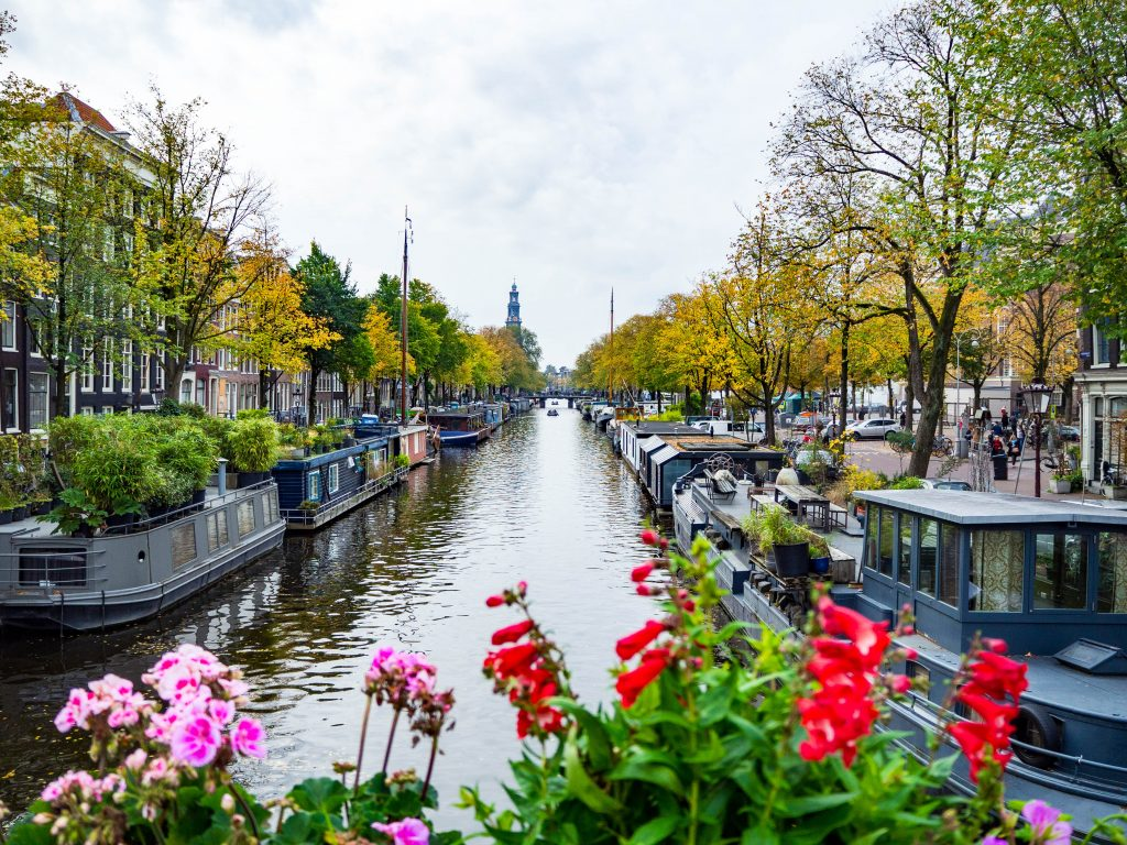 amsterdam photo canal in jordaan with flowers in foreground