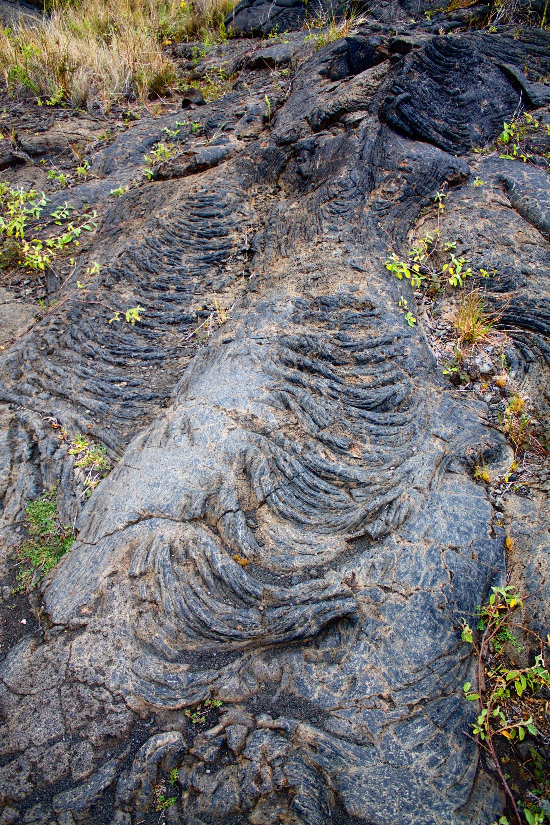 Volcanoes National Park Hawaii Lava flows