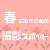 春におすすめのお花がきれいな撮影スポット