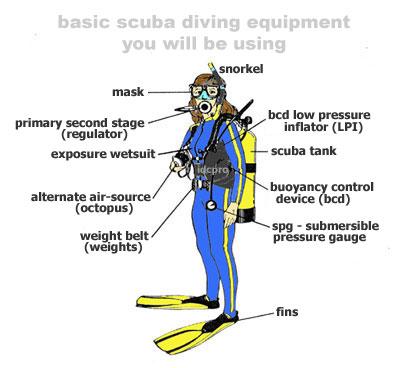 scuba gear diagram 3 phase star delta wiring basic start making waves