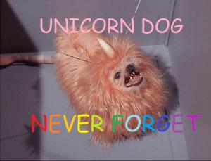 unicorndog never forget