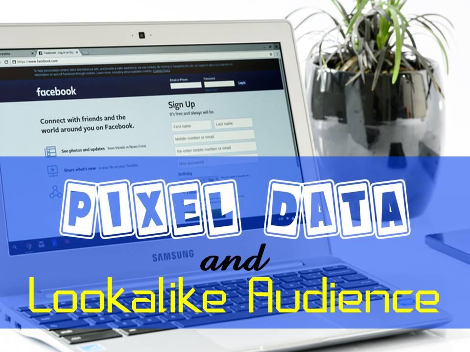 building pixel data plus lookalike audience