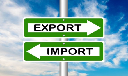 Starting an Import Export Business In Zimbabwe