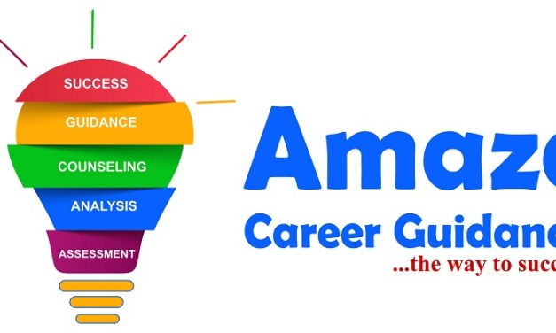 Career Guidance App/Website Business Idea in Zimbabwe