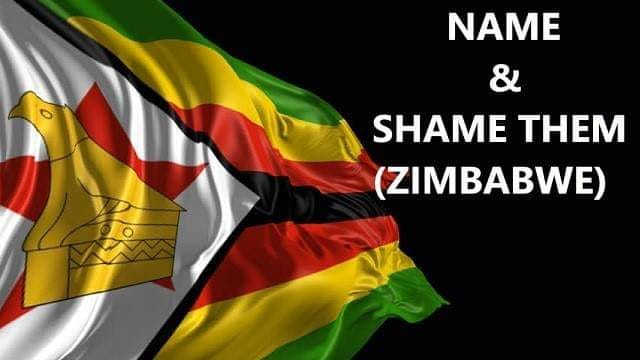 Name and Shame them Zimbabwe (Facebook Group)