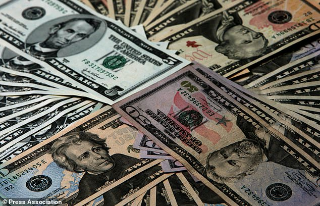 Foreign Currency Allocation Committee appointed