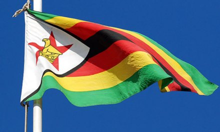 Zim situation, we are not alone! Or, are we?