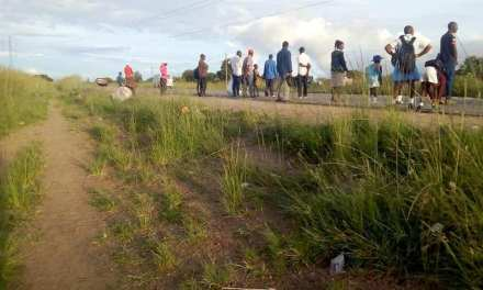 ZUPCO disappears and leaves commuters stranded.