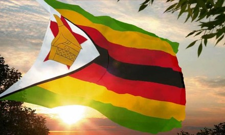 Business tips for Zimbabweans investing from the diaspora