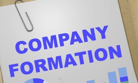 Why is a company the preferred business structure?