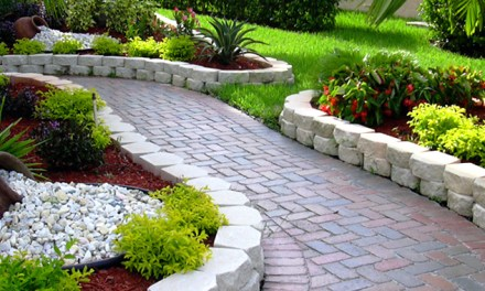 Tips for starting a landscaping business in Zimbabwe.