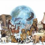 Business Lessons Inspired By Animal Life