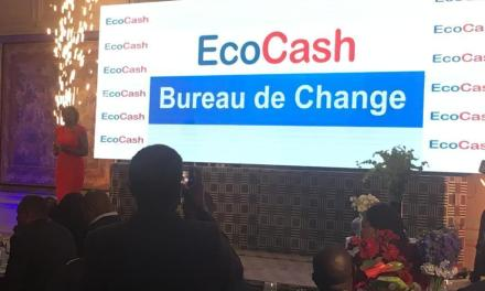 The Recently Introduced Ecocash Digital Bureau De Change