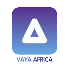 Vaya Proposes A Way To Deal With Fuel And Foreign Currency Shortages