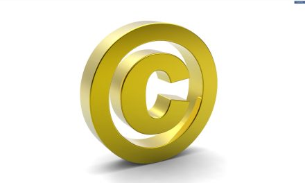 Strategies copyright owners have adopted to survive piracy
