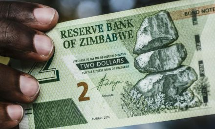 Zim dollar strengthens, what's going on?