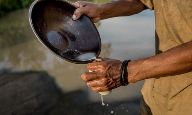 Starting A Small Scale Gold Mining Business In Zimbabwe