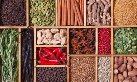 Starting a herb and spice shop in Zimbabwe