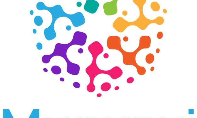 Munyayi: Digital Project Management Platform Creating Employment In Africa