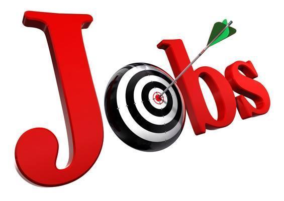 7 Tips For Job Hunting In Zimbabwe