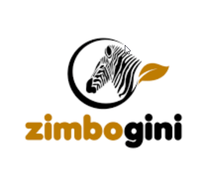 Zimbogini: Easy does it for eCommerce startup