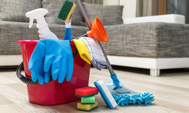 Starting Cleaning Services Business Plan (PDF)