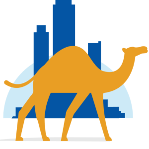 Startup Camel