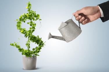 yatırım ortamının iyileştirilmesi