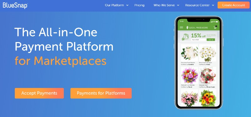 Blue Snap - Best Payment Gateways