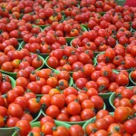 5 Profitable Agricultural Businesses You Can Start In Nigeria Today