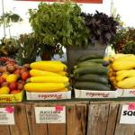 5 Ways To Sell Your Agricultural Products Online