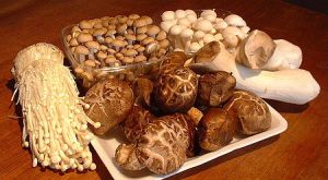 Mushrooms As Medicine
