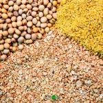 How to Start The Lucrative Production And Sales Of Livestock Feed In Africa