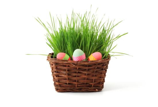 10+ Easter Business Ideas And Opportunities In Nigeria