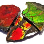 How To Start The Lucrative Export Of Ammolite Gemstone From Nigeria To International Buyers