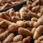 How To Start The Lucrative Export Of Groundnuts From Nigeria To International Buyers