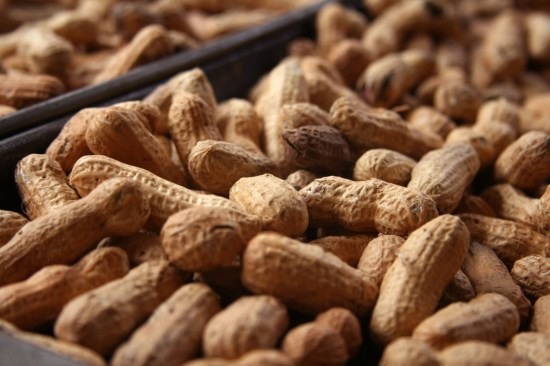 How To Start Exporting Groundnut From Nigeria To International Buyers