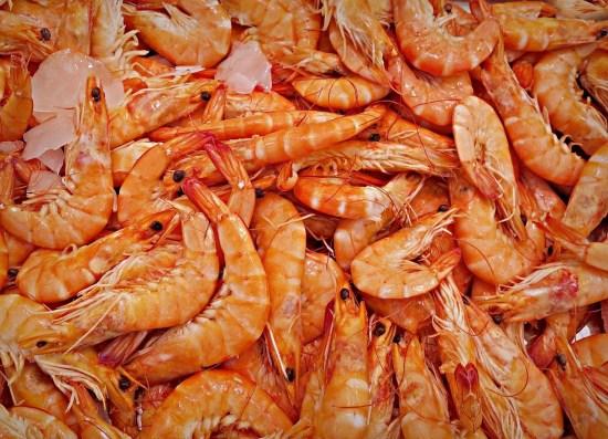 How To Start Shrimps and Prawns Production in Nigeria or Africa: Guide