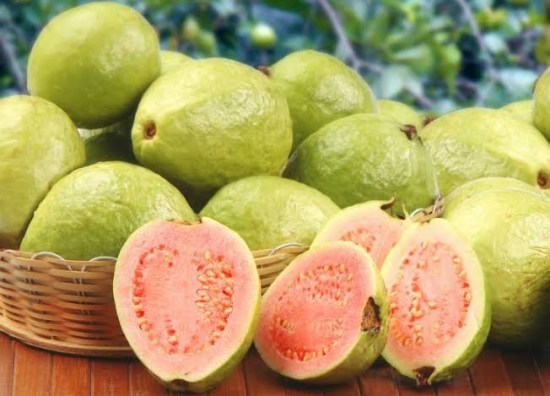How To Start Guava Farming Business in Nigeria or Africa: Complete Guide